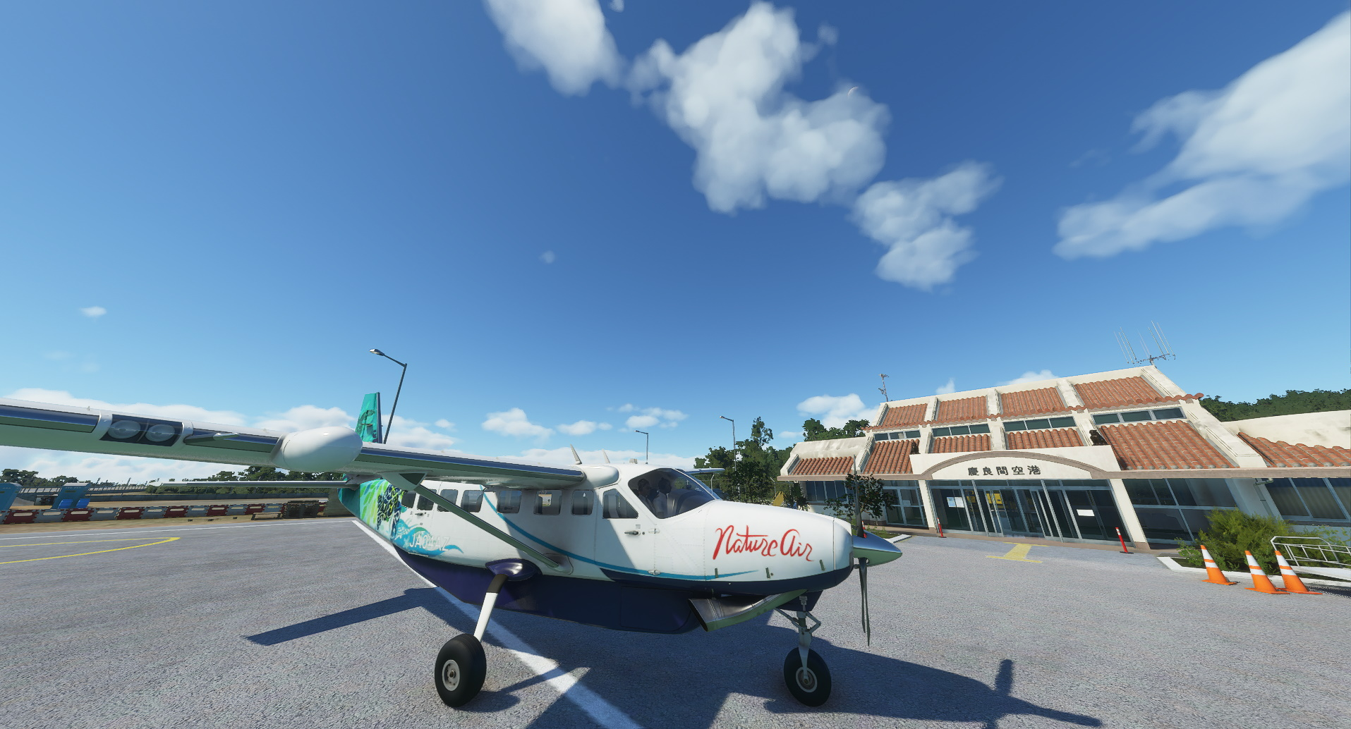 An-important-new-Microsoft-Flight-Simulator-patch-is-live.jpg