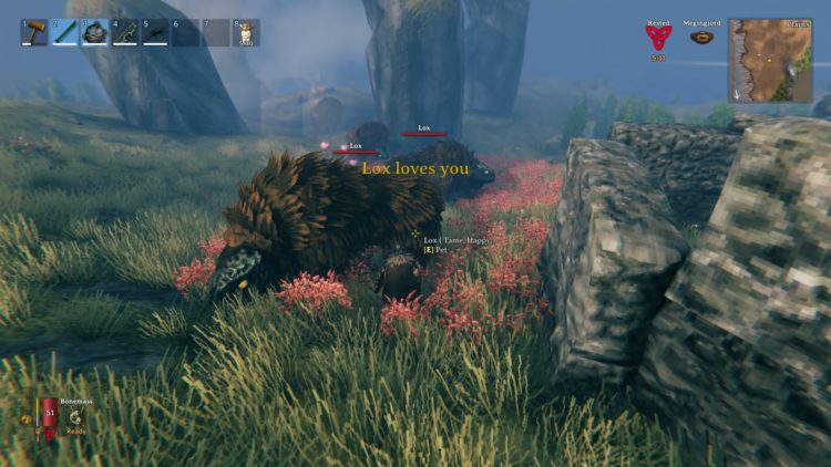 1613992082_945_Valheim-guide-How-to-tame-lox-beasts.jpg