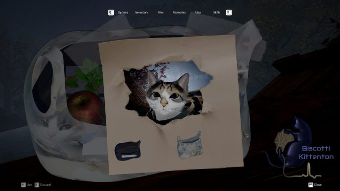 Etched Memories, a cat horror adventure, is available for demo on Steam